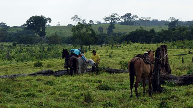 Tour Cano Piedra